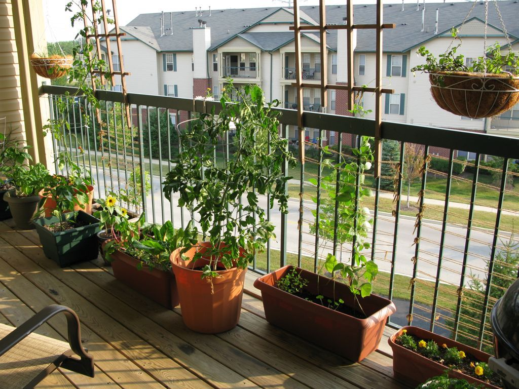 Urban oasis balcony gardens that prove green is always in for Balcony apartments