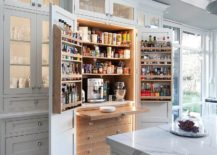 Small-and-space-savvy-pantry-for-the-contemporary-kitchen-217x155