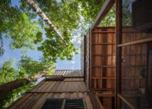 Trees-that-are-over-30-years-old-help-create-a-beautiful-Forest-House-217x155