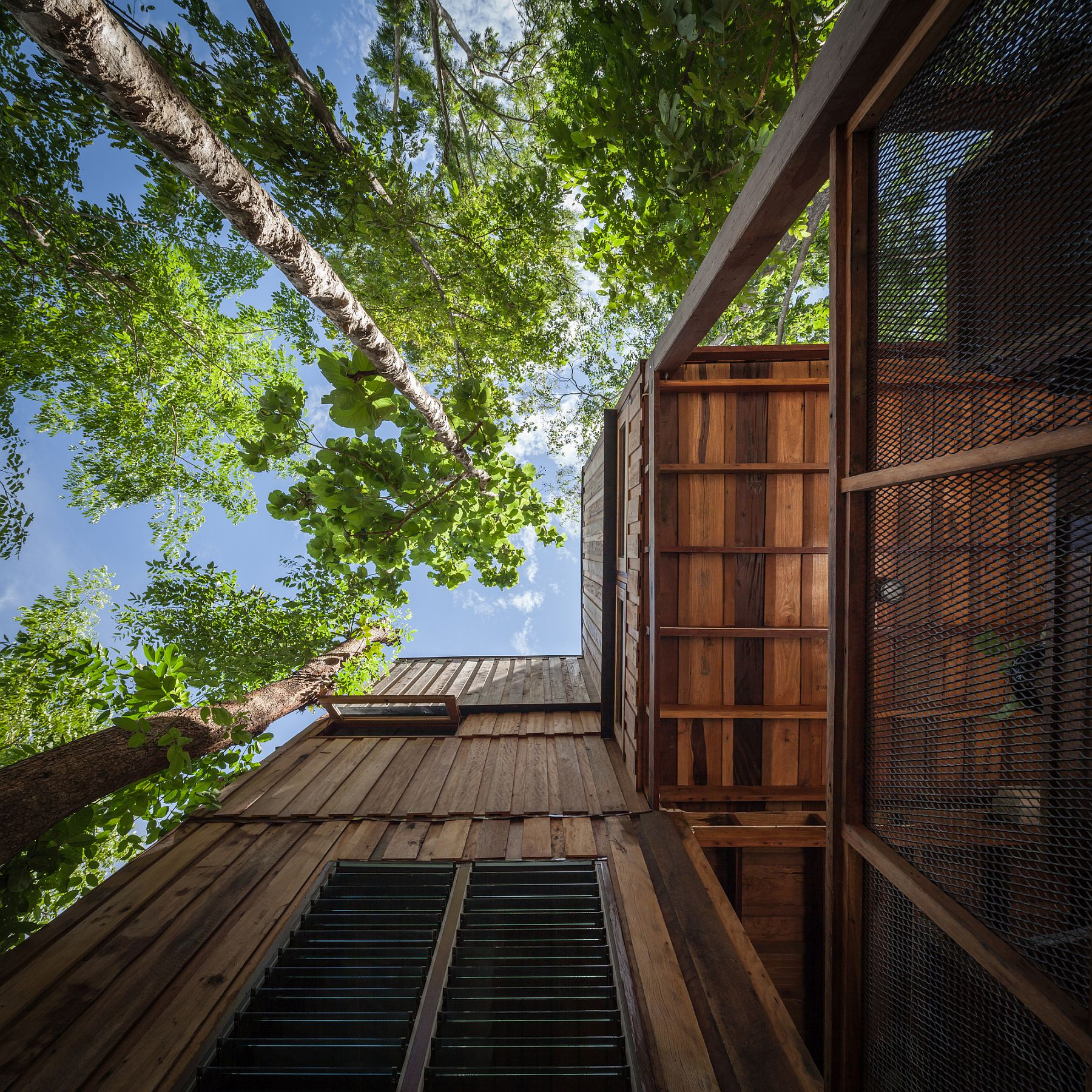 Trees-that-are-over-30-years-old-help-create-a-beautiful-Forest-House