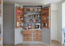 Trendy Kitchen Doors