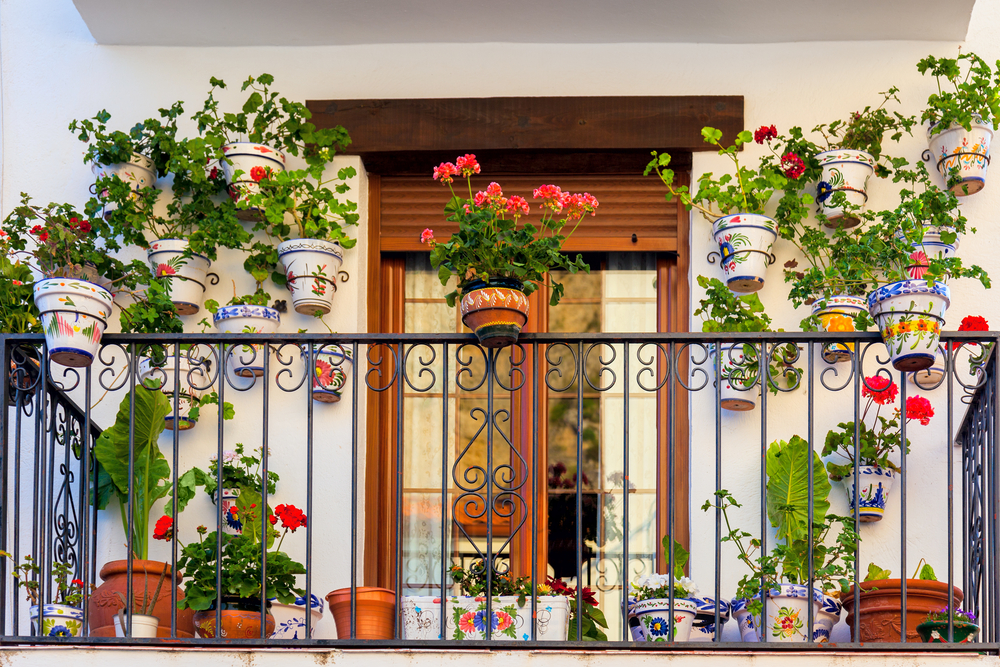 Urban balcony garden with blooming florals
