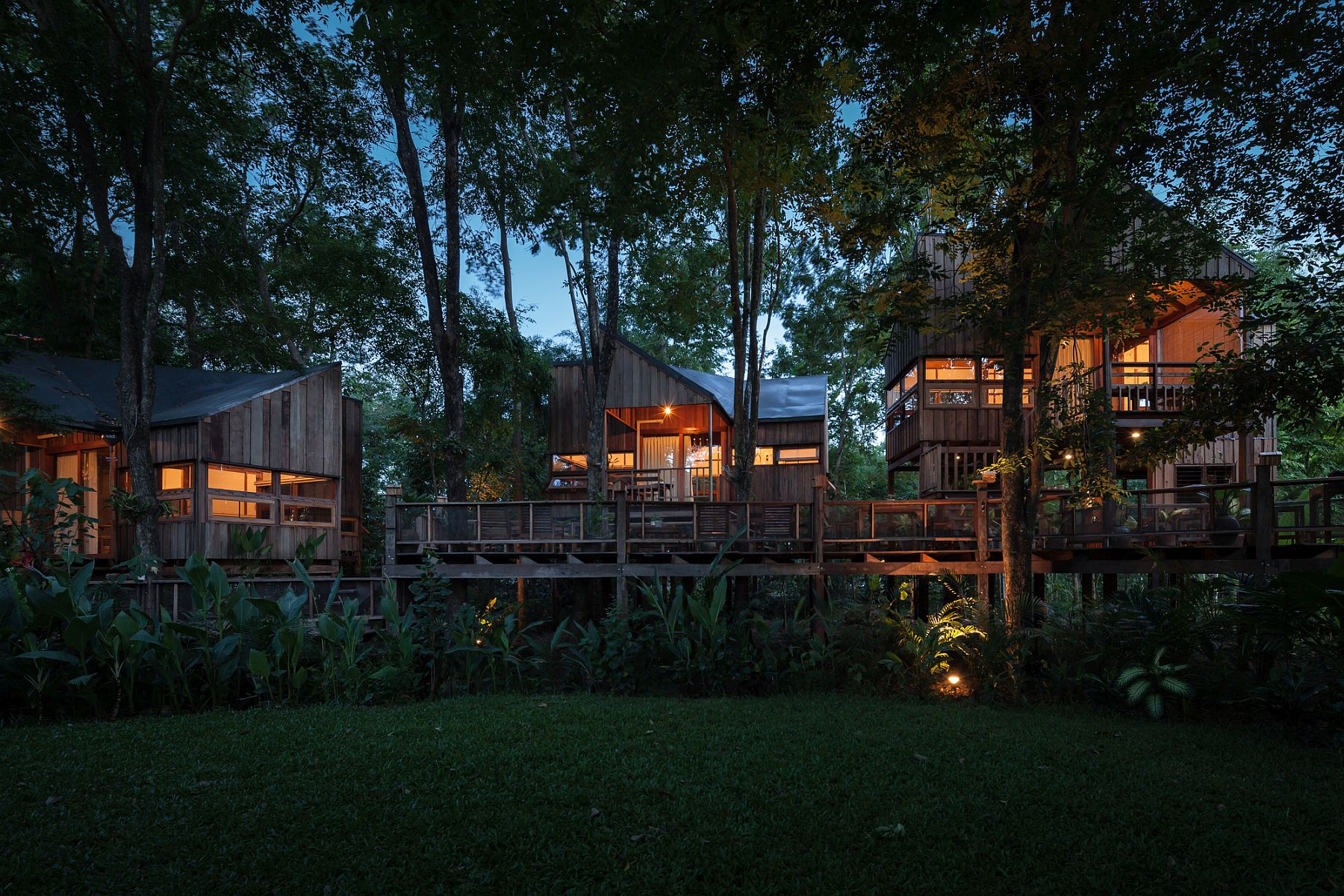 Backyard jungle stunning eco friendly homes engulfed in for Forest house