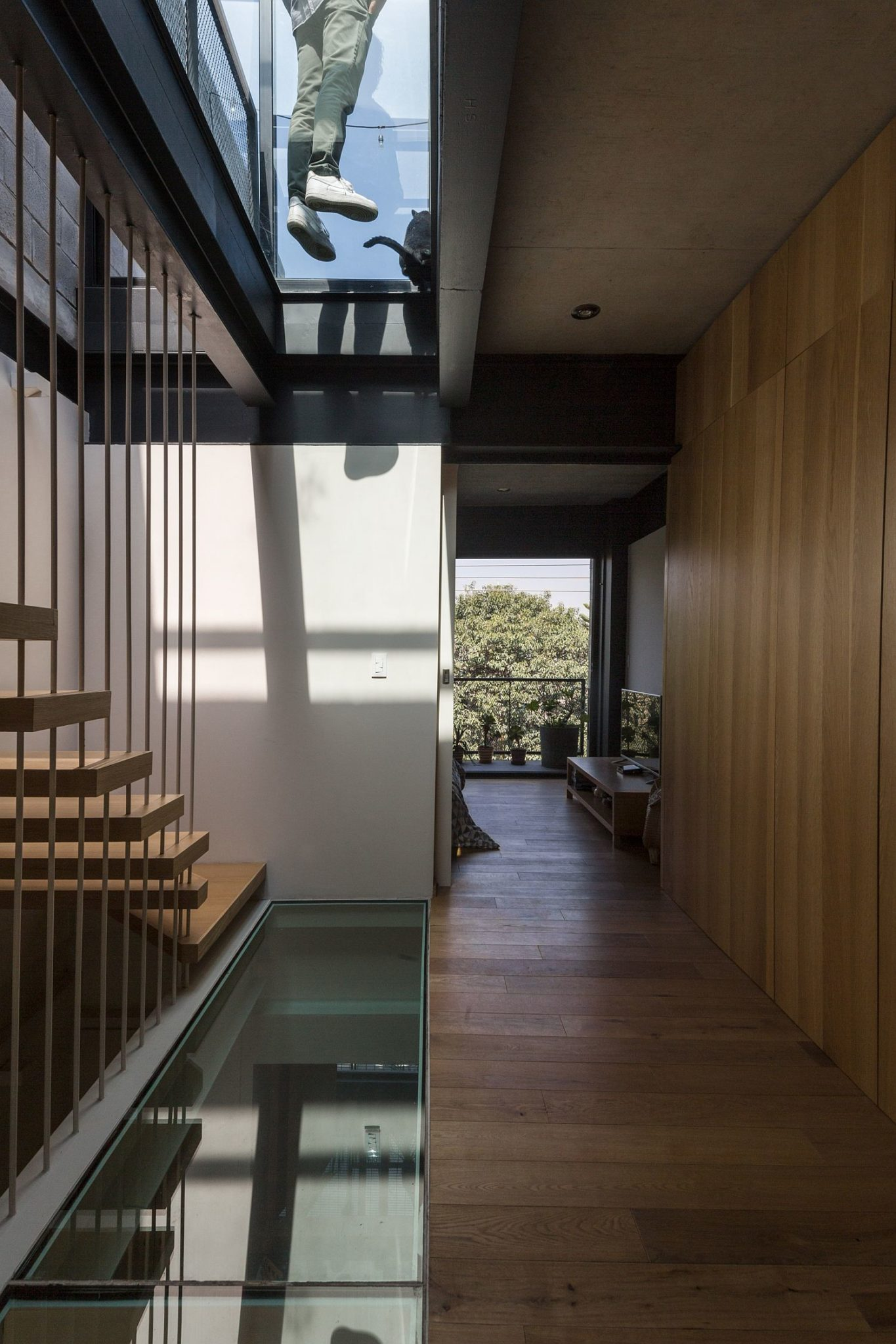 Glass walkways and ceiling bring light into the modern home