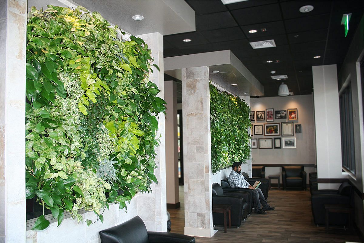 LiveWall Indoor system for Tropical Style Interior