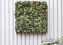 A Living Wall Is Indeed An Awesome Addition And A DIY Living Wall Adds To  The Fun Twist To This Green Upgrade And Gives You More Freedom In Regards  To The ...