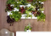 Charming ... Planter From Woolly Pocket. A Living Wall Is Indeed An Awesome Addition  And A DIY Living Wall Adds To The Fun Twist To This Green Upgrade And Gives  You ...