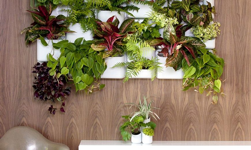 Vertical Goodness: 10 DIY Living Walls Kits for Green Living
