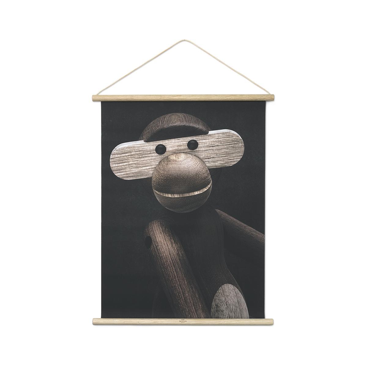 Monkey photo portrait