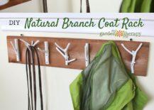 Natural-branch-coat-rack-DIY-idea-217x155
