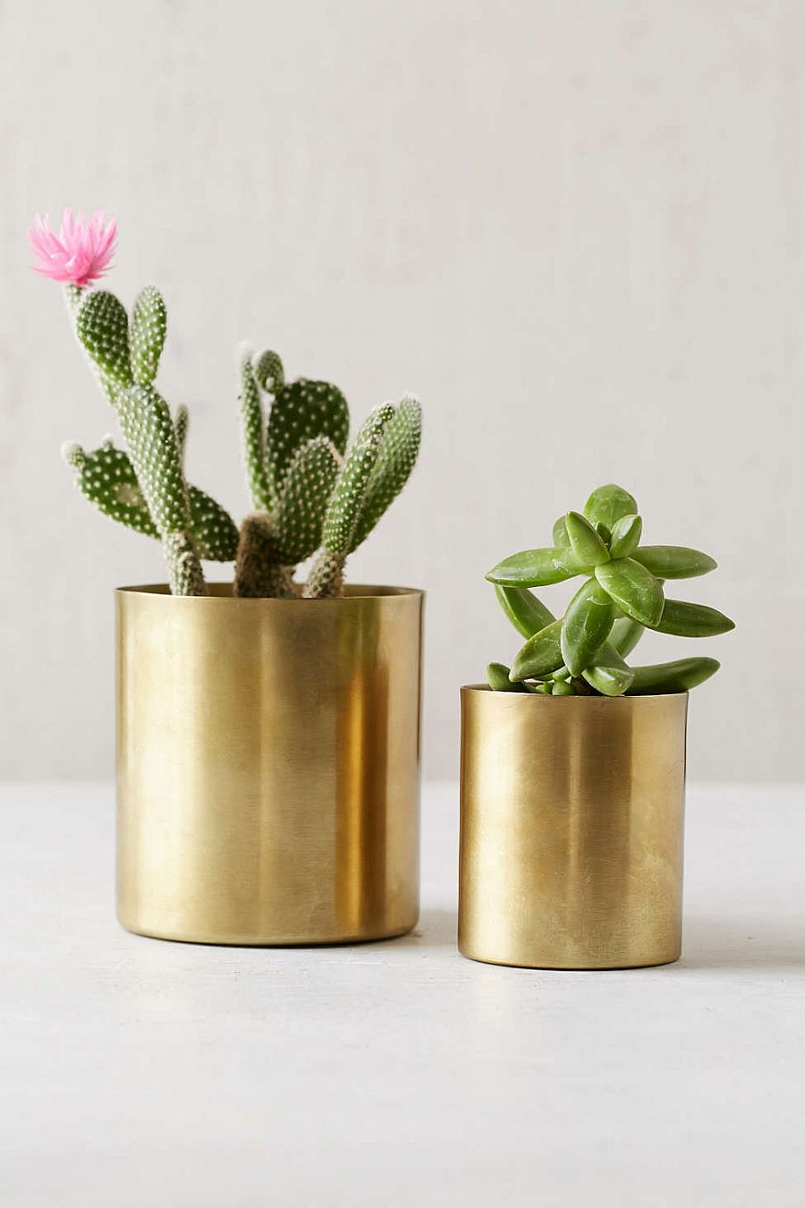 10 Diy Planters That Usher In Metallic Dazzle Along With