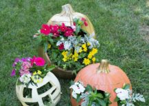 Gorgeous-DIY-floral-fall-planter-crafted-from-pumpkins-217x155