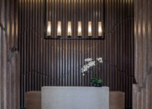 Minimal-accessories-and-modern-lighting-fixture-at-the-entrance-217x155