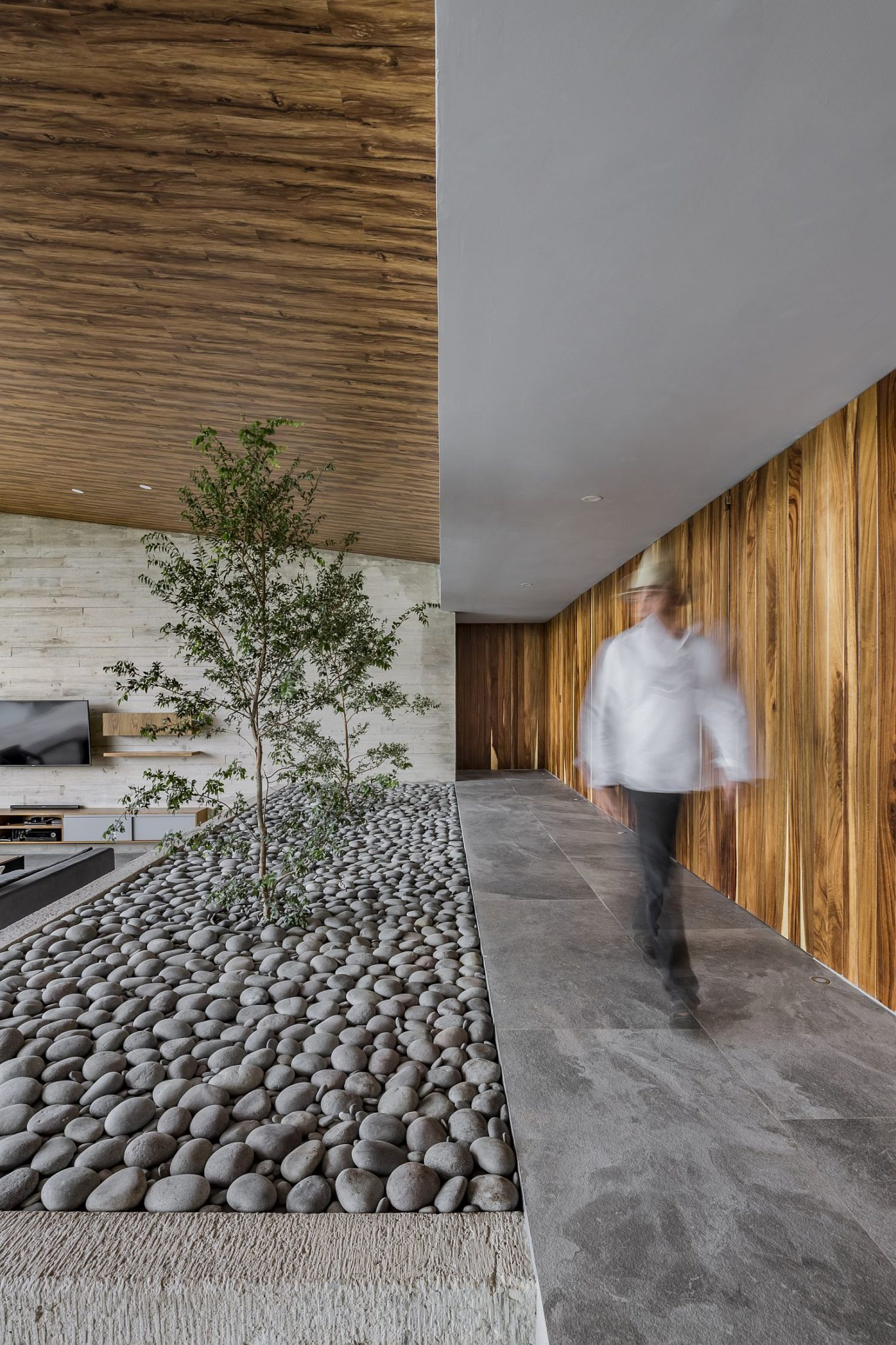 Small river rocks and a hint of greenery for the interior