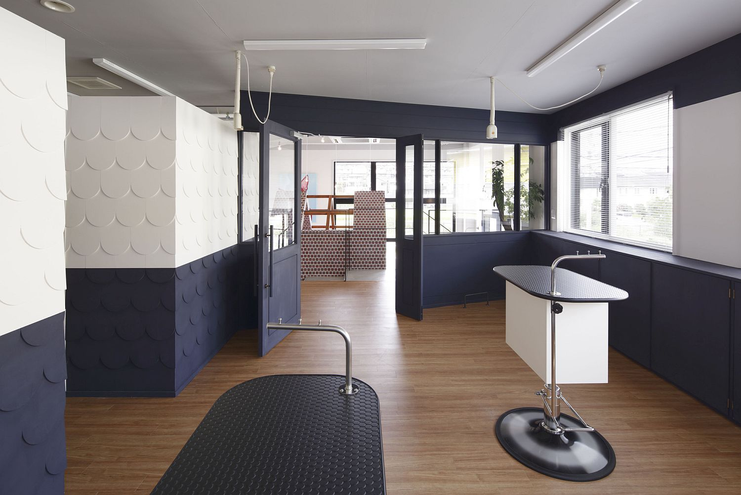 White and navy blue interior of the Dog Salon