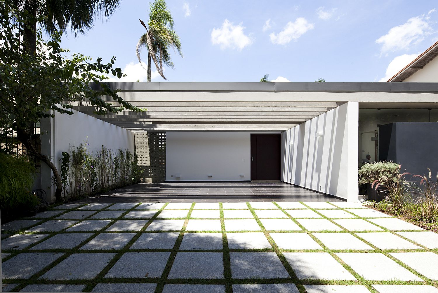 Curated modern landscape around the modern home