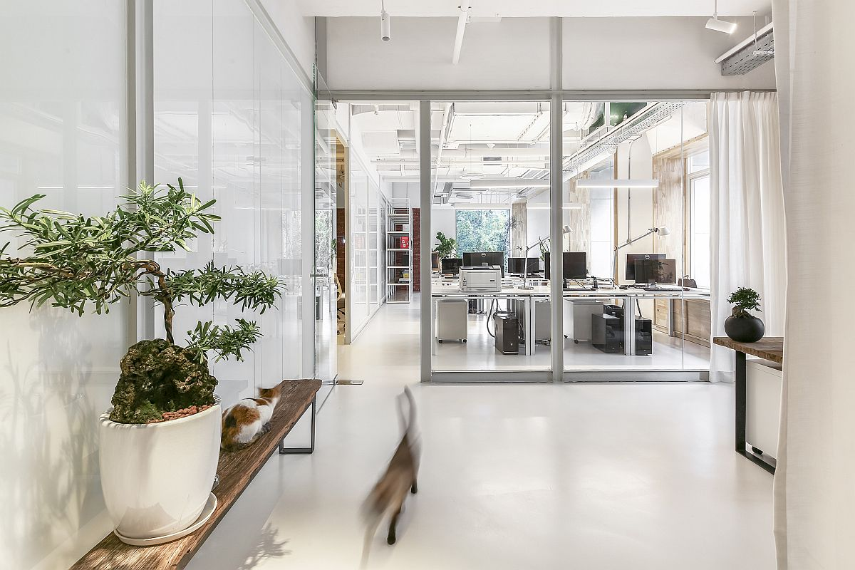 Curated office in white with large glass partitions and indoor greenery
