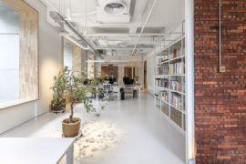 Tranquil zen aesthetics welcome you at this contemporary for Office plants no natural light