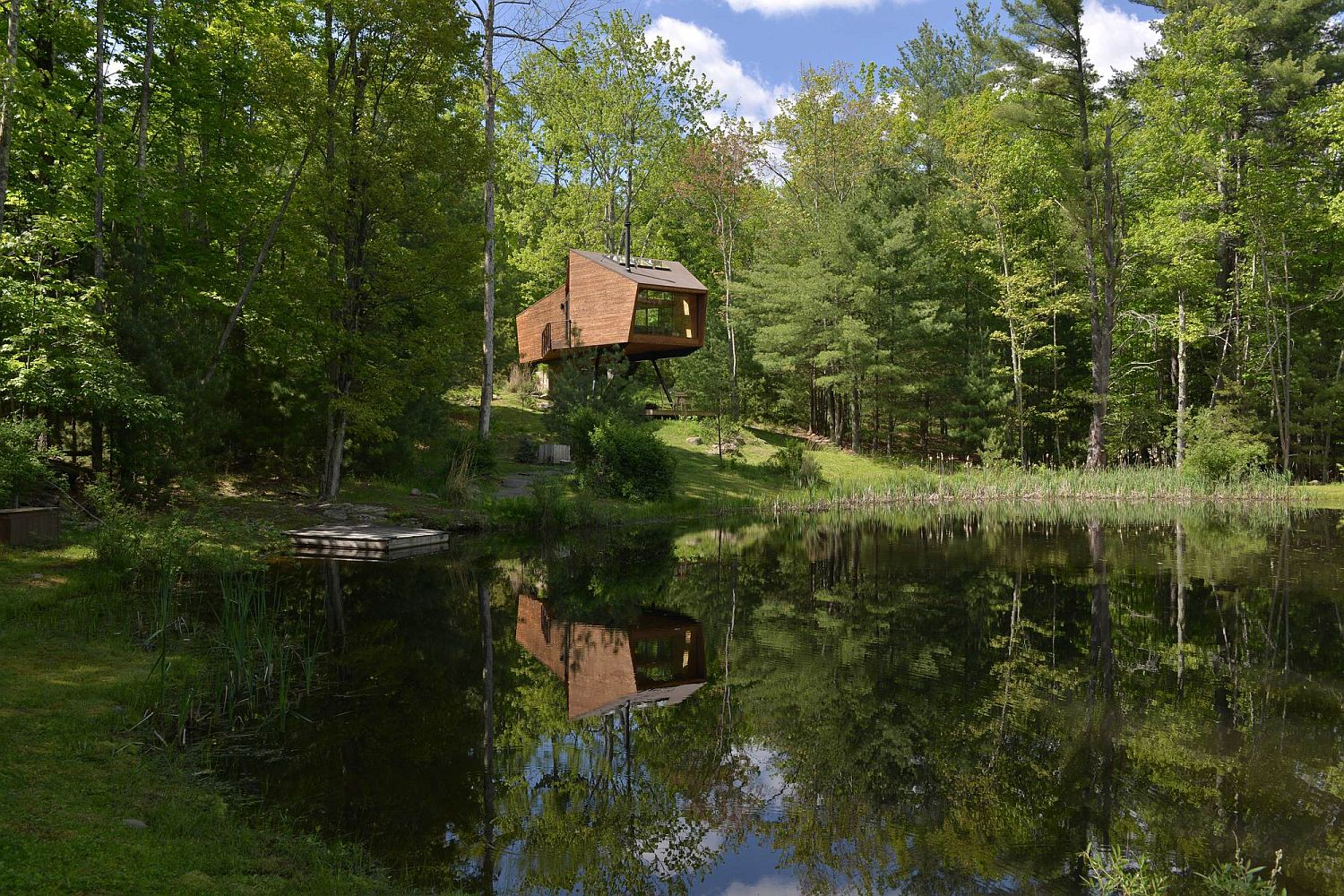 Natural pond and woods surrounding the tranquil treehouse