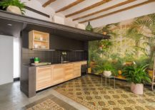 Tropical-scenery-and-greenery-bring-vibrance-to-the-kitchen-217x155