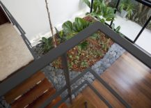 View-of-the-internal-garden-from-the-upper-level-of-the-contemporary-home-217x155