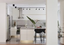 Contemporary-kitchen-with-lovely-track-lighting-and-refined-modern-design-217x155