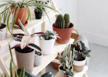 DIY-ladder-plant-stand-idea-217x155