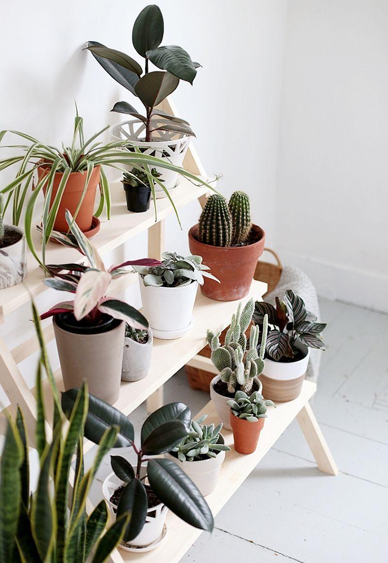 DIY-ladder-plant-stand-idea