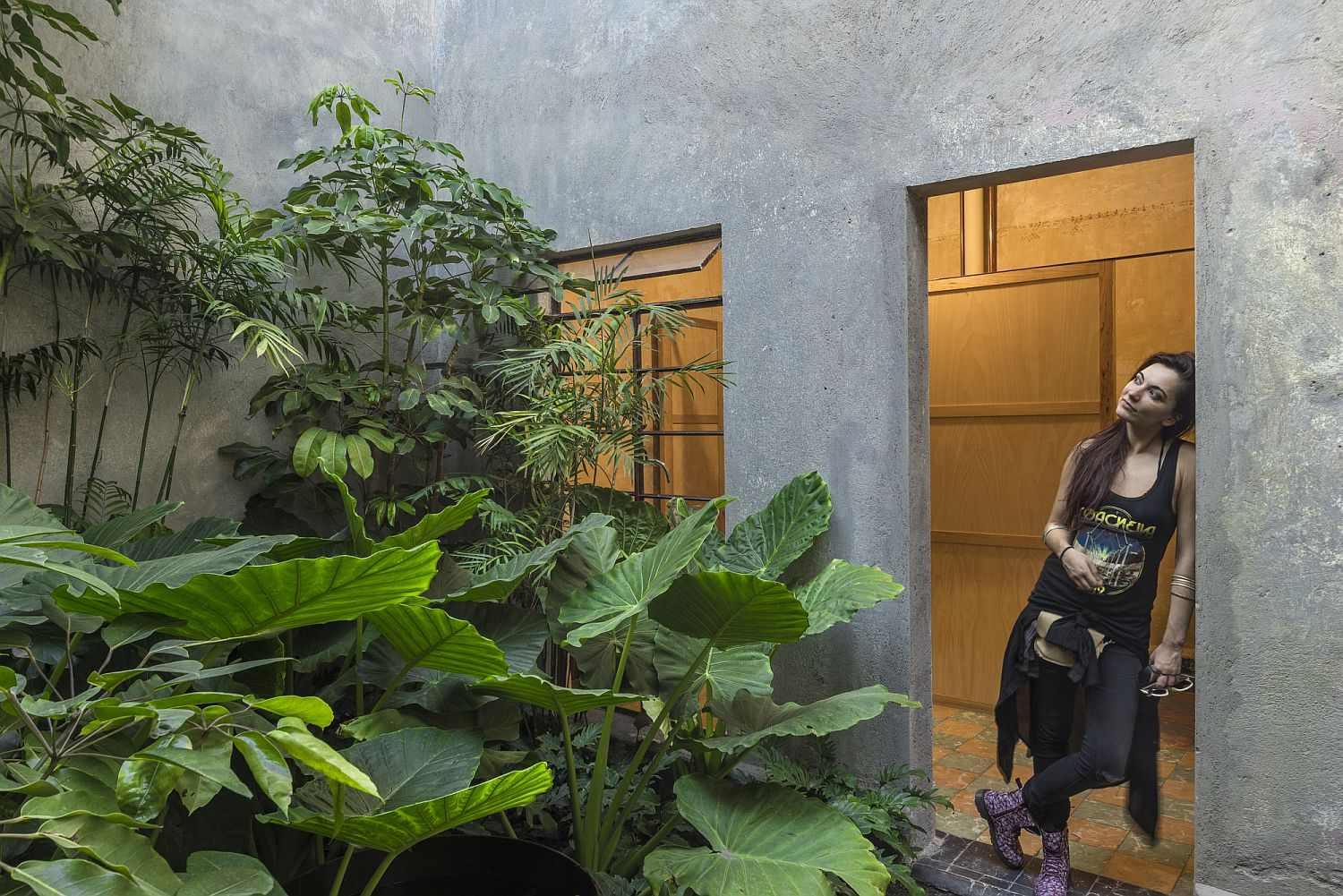 Interior courtyard of the revamped art gallery with plenty of greenery