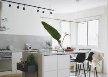 Light-colored-kitchen-with-marble-concrete-and-wooden-surfaces-217x155