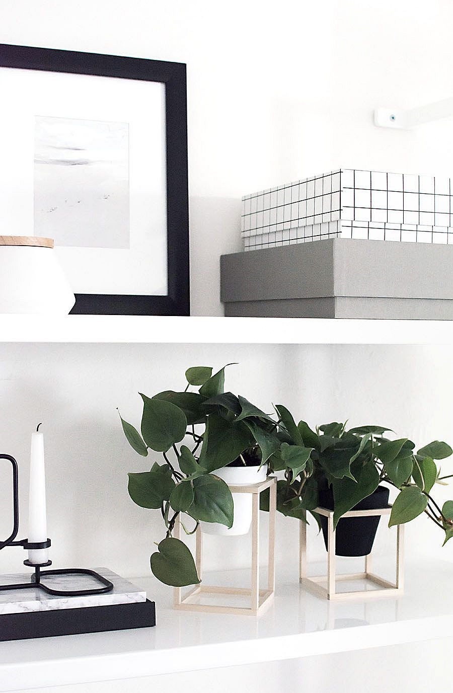 Minimal-DIY-Plant-Stand-for-the-polished-contemporary-home