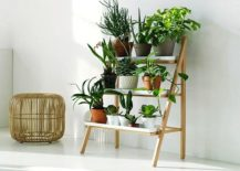Multi-level-DIY-plant-stand-idea-for-a-small-vertical-garden-indoors-217x155
