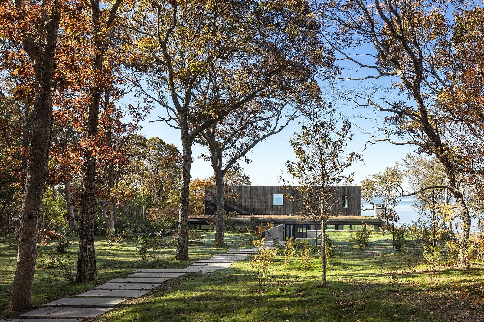 Woods-surrounding-the-Shore-House-leading-to-lovely-Bay-area