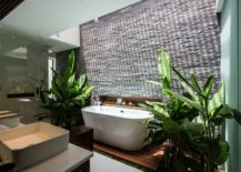 Contemporary-bathroom-with-skylight-and-tropical-greenery-217x155
