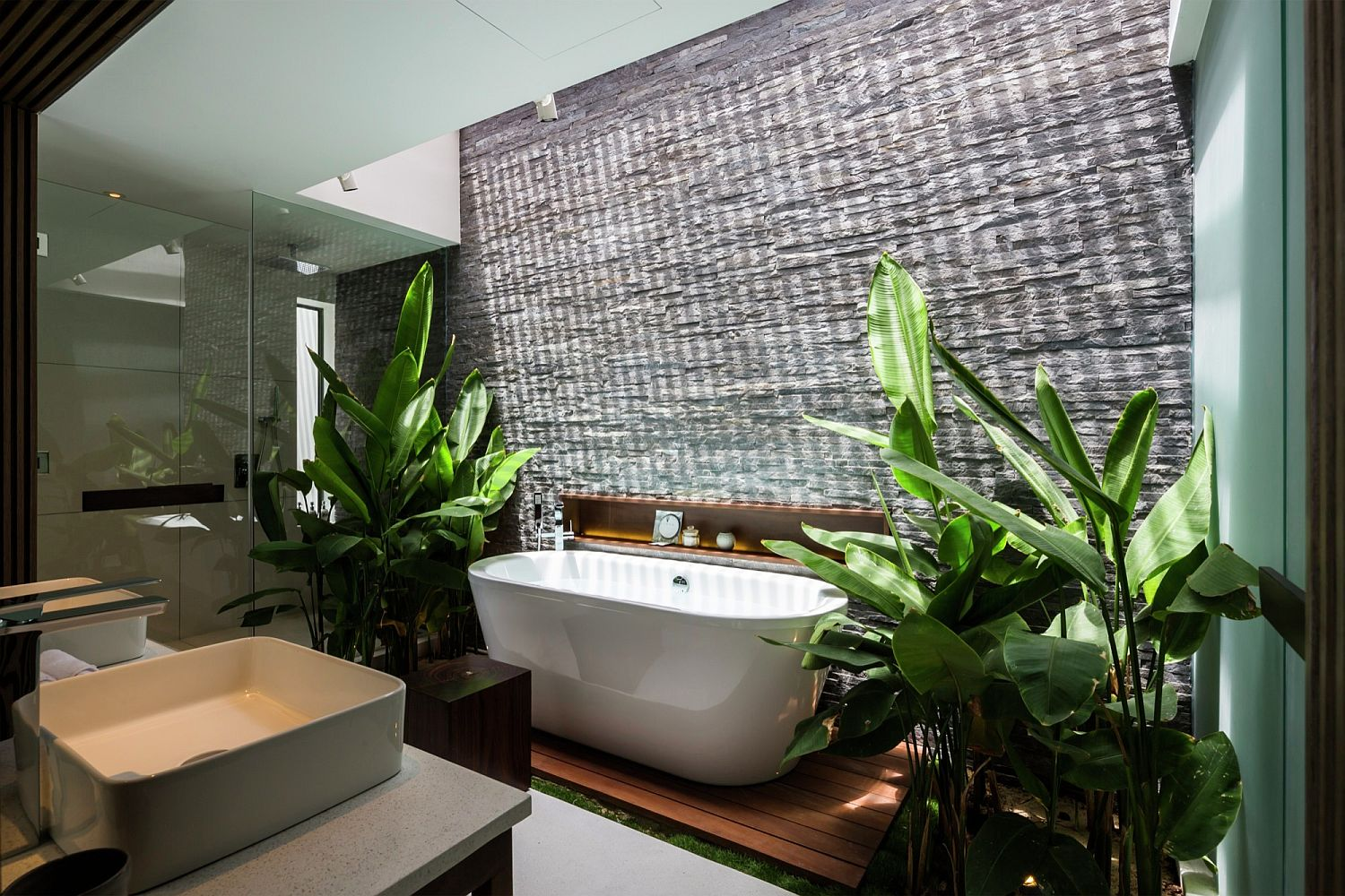 Contemporary bathroom with skylight and tropical greenery