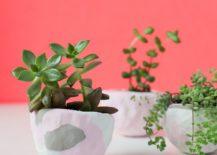 Cute-DIY-Mini-Pich-Pot-Planters-217x155