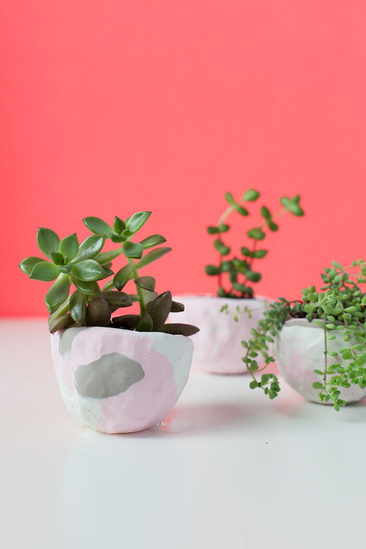 Cute-DIY-Mini-Pich-Pot-Planters