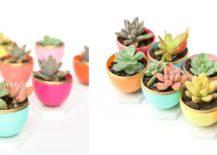 DIY-Mini-Spring-Succulent-Planters-217x155