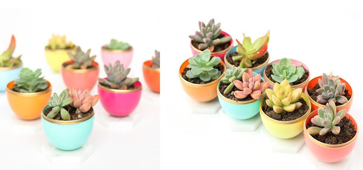 DIY-Mini-Spring-Succulent-Planters