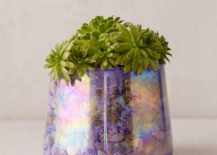 Glass-candleholder-repurposed-as-a-planter-217x155