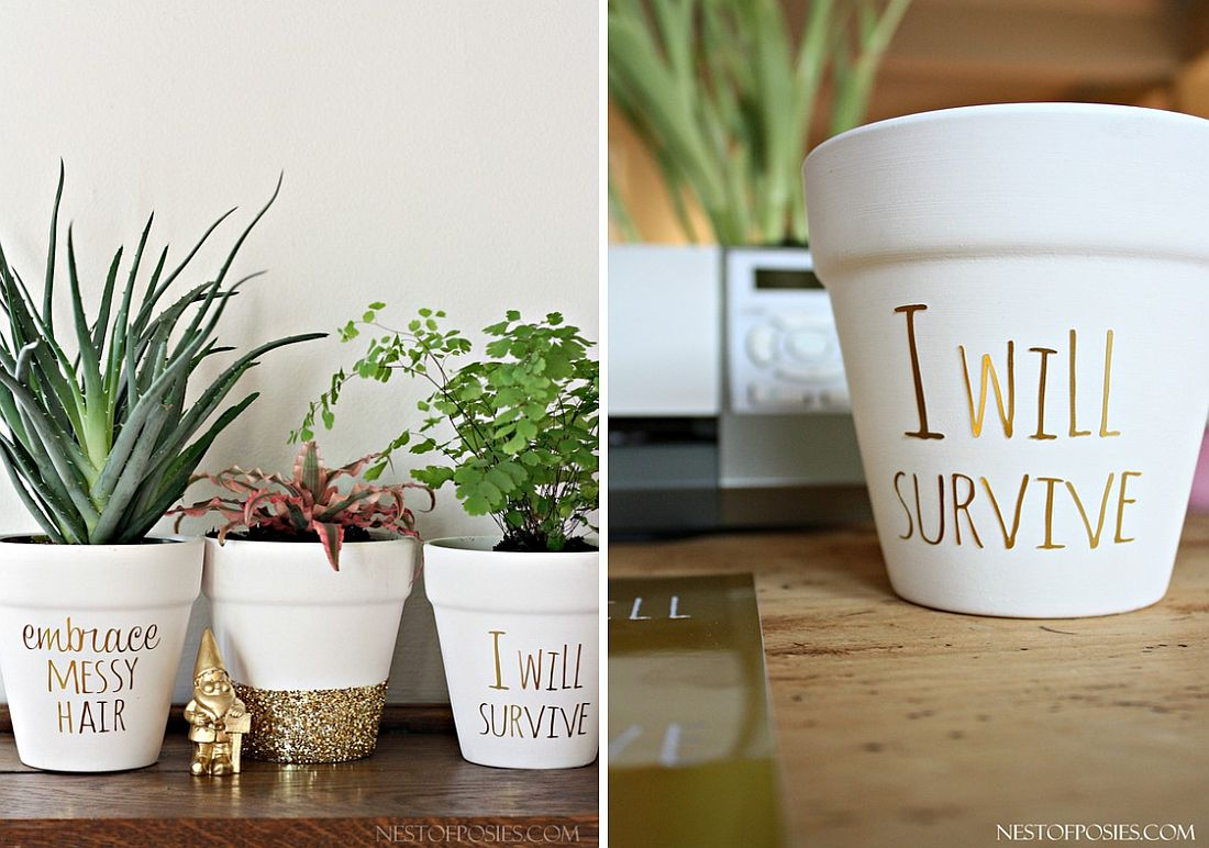office planter. Office Planter