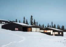 Smart-placement-of-windows-gives-the-cabin-a-modern-vibe-217x155
