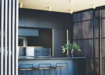 Fabulous-use-of-dark-blue-and-white-in-the-contemporary-kitchen-217x155