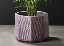 Lavender-planter-with-geo-style-217x155
