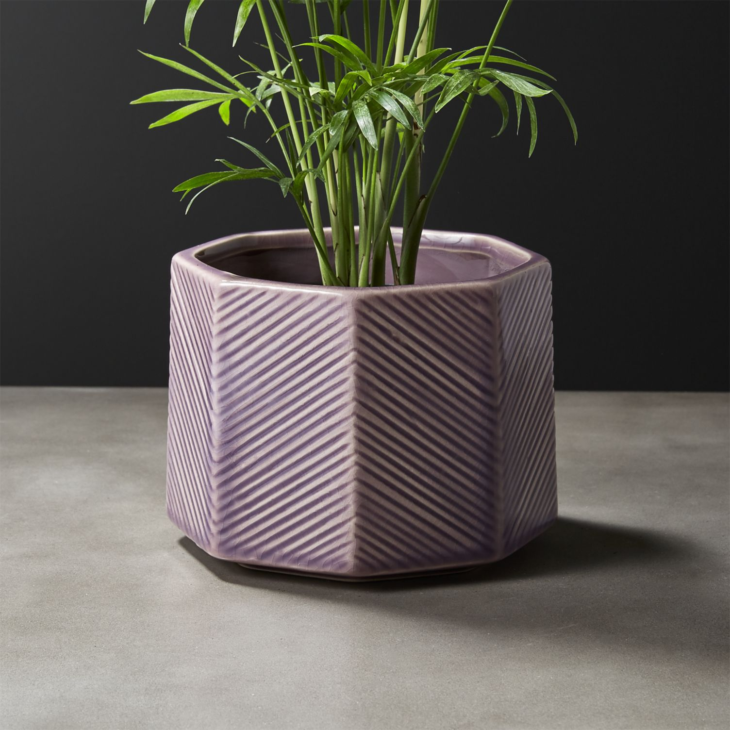Lavender planter with geo style