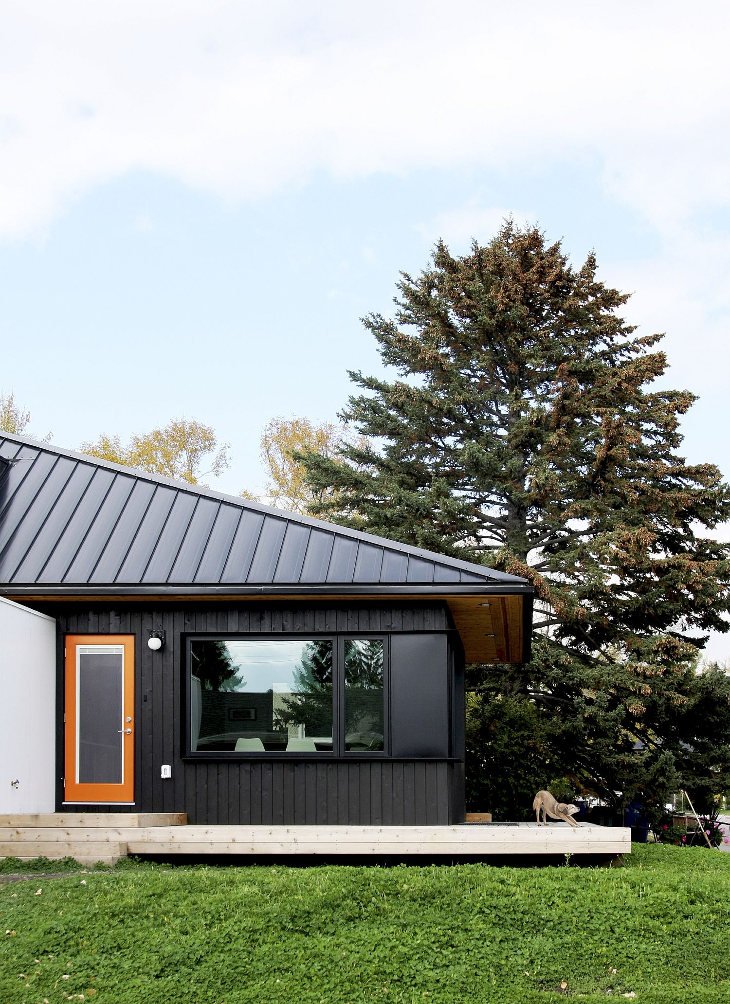 Contemporary Hillhurst Laneway House in Canada