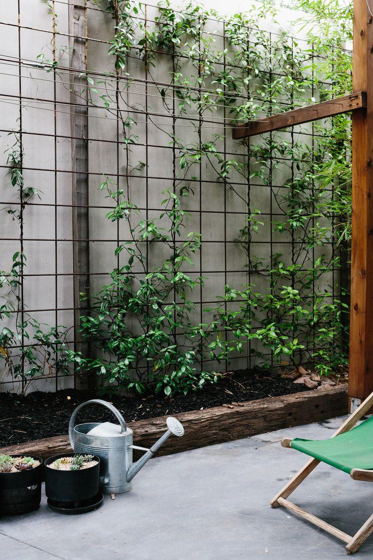 Custom metal trellis for a modern garden