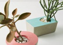 Modern-planters-from-Anthropologie-217x155