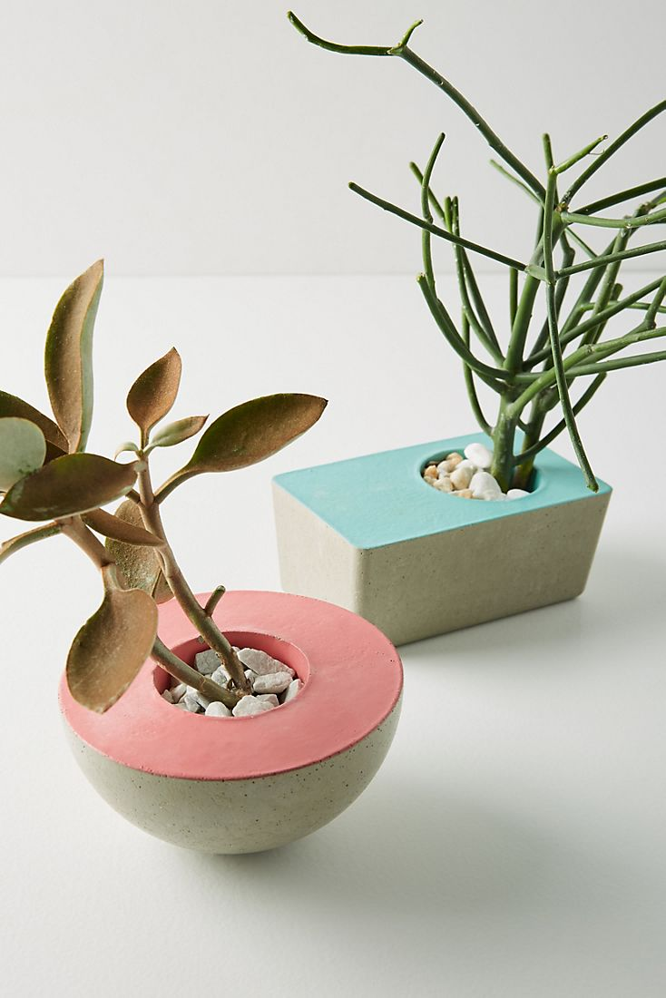 Modern planters from Anthropologie