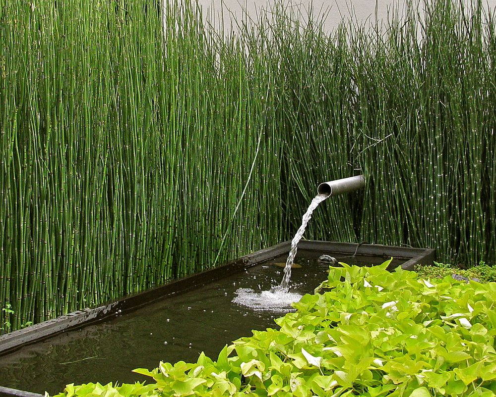 Modest water features work well in urban landscape